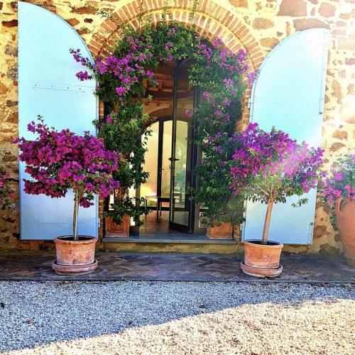 terakotove kvetinace velke