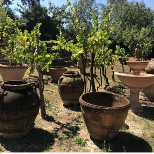 terakotove kvetinace zahradne
