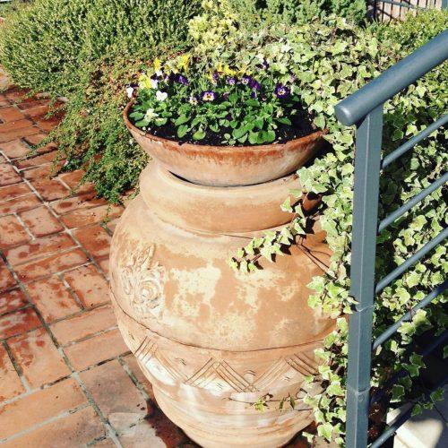 velky terakota kvetinac