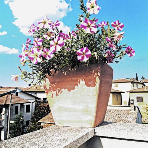 mohutný terakotovy kvetinac