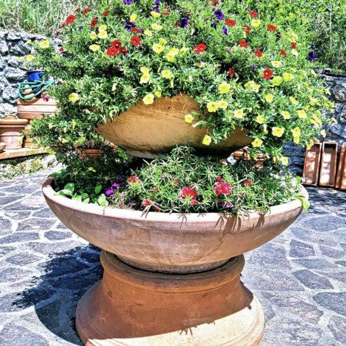 záhradný terakota kvetináč